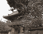 Japanese Tea Garden Pagoda In Sepia. Golden Gate Park Print by Connie Fox