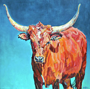 Steer Framed Prints - Jasper Framed Print by Patricia A Griffin