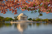 Thomas Jefferson Posters - Jefferson Memorial in Spring Poster by Jerry Fornarotto