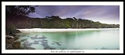 Jervis Prints - Jervis bay wilderness Print by Donald Goldney