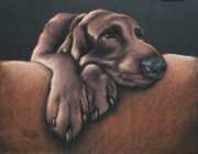 Hound Pastels Framed Prints - Jethro Framed Print by Cynthia House