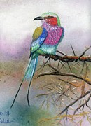 Plumage Pastels - Jewel Of The Serengheti by Martha Cervantes