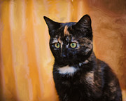 Tortoiseshell Prints - Jeweled Eyes Print by Jai Johnson