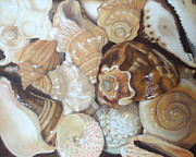 Seashell Art Pastels Prints - Jewels of the Sea Print by Joanne Grant