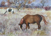 Pinto Paintings - Jills Horses on a November Day by Anne Gifford