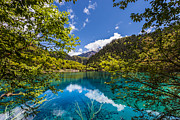 Turquoise Mountain Lake Prints - Jiuzhaigou Lake in China Print by Fototrav Print