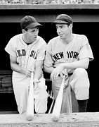 League Photo Framed Prints - Joe DiMaggio and Ted Williams Framed Print by Sanely Great