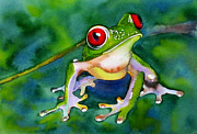 Red-eyed Tree Frog Painting Prints - Joe - the Red Eyed Tree Frog Print by Susan Duxter
