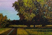 Jogging Trail At Two Rivers Park Print by Amber Woodrum