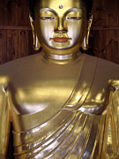 Siddharta Photo Posters - Jogyesa Buddha Poster by Jean Hall