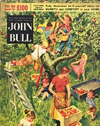 Featured Art - John Bull 1950s  Uk Picking Apples by The Advertising Archives