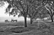 Winter Road Scenes Photo Prints - John Deer Tractor and the Avenue of Oaks Print by Scott Hansen