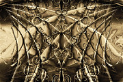 Technical Metal Prints - Journey 20130511v2 Metal Print by Wingsdomain Art and Photography
