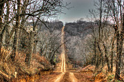 Backroad Prints - Journey Print by Thomas Danilovich