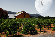 Napa Valley Vineyard Prints - Journey Through The Valley of The Moon 5D24485 Print by Wingsdomain Art and Photography