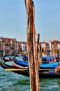 Venice Photo Framed Prints - Joyride-Venice Italy Framed Print by Tom Prendergast