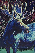 Moose Art Framed Prints - Jr Framed Print by Patricia A Griffin