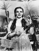 Pig Tails Posters - Judy Garland As Dorothy Poster by Underwood Archives