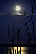 Raymond Salani III - July 2014 Super Moon
