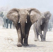 Ralph N Murray III - Jumbo Walk painting