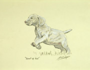 Pencil Drawing Pastels Prints - Jump of joy Print by John Silver