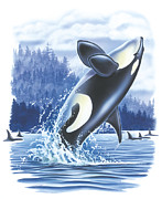 Jon Q Wright Framed Prints - Jumping Orca Framed Print by JQ Licensing