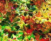 Ann Johndro-Collins - Jungle Fantasy