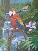 Macaw Drawings - Jungle Life by Daniel King
