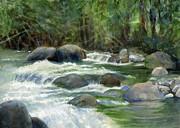 Sharon Freeman - Jungle Stream
