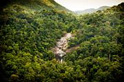Tim Hester - Jungle Waterfall