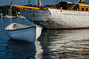 Vineyard Haven Prints - Juno and Dory Print by Steve Myrick