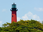 Jupiter Inlet Posters - Jupiter Inlet Lighthouse Poster by Michelle Wiarda