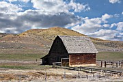 Rural Scenes Prints - Just An Old Barn Print by Christy Patino