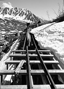 Alaskan Railroad Prints Photos - Just Around The Bend by Danise Abbott