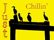 Debbie Posters - Just Chillin Poster by Deborah  Crew-Johnson