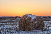 Haybale Framed Prints - Just Cold Framed Print by Scott Bean