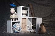 Star Life Photos - Just for Fun Still Life by Tom Mc Nemar