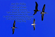 Affirmation Prints - Just for Today 1 Print by ABeautifulSky  Photography