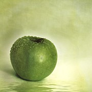 Apple Still Life Art - Just Green by Priska Wettstein