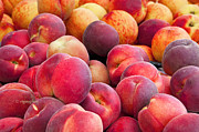 Peaches Photo Prints - Just Peachy NJ Print by Regina Geoghan