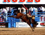 Rodeos Photo Posters - Just Two More Seconds To Go Poster by Joe Kozlowski