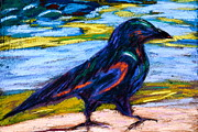 Ravens Pastels Posters - Just Walking Along Poster by Beverley Harper Tinsley