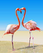 Flamingo Framed Prints - Just We Two Framed Print by Kristin Elmquist