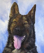 Working Dogs Framed Prints - K9 Officer Kaiser-Sable German Shepherd Framed Print by Barb Yates