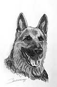 Police Art Drawings Framed Prints - K9 Partner Framed Print by Barbara Giuliano