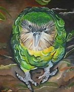 Parrot Paintings - Kakapo by Una  Miller