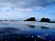 Washington State Prints - Kalaloch Rocks Print by Christopher Fridley
