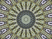 Mystical Art Posters - Kaleidoscope 6 Poster by Tom Druin