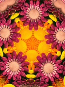 Daisies Metal Prints - Kaleidoscope Daisies Metal Print by Amy Cicconi