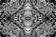 Quad Posters - Kaleidoscope in Wood 6 horizontal Poster by Dawn Currie